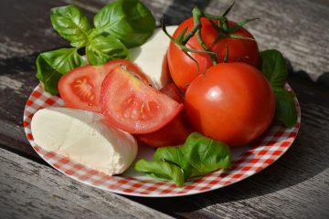 Nutrición en fisioterapia